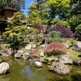 japanese garden sf