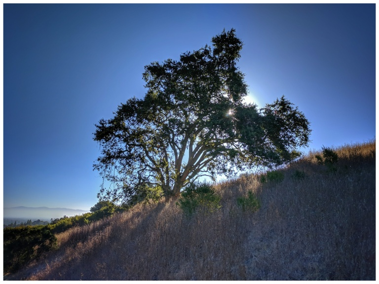 Sunrise Rancho San Antonio