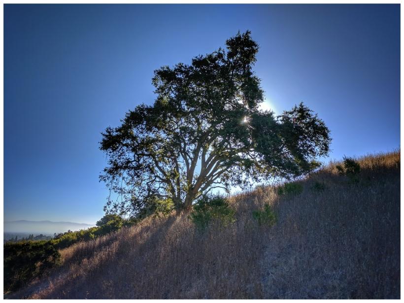 Sunrise Rancho San Antonio