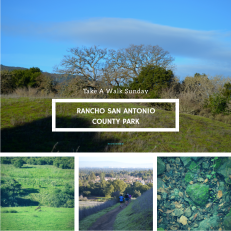 Rancho San Antonio | Fate Of 8 O 8 mediA ©