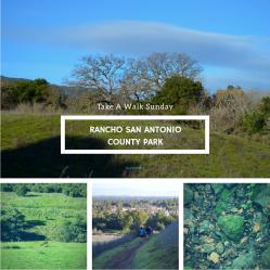 Rancho San Antonio | Fate Of 8 O 8 mediA ©