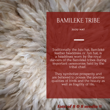 Bamileke Tribe   Fate Of 8 O 8 mediA ©