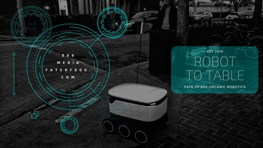 808 robotics-2.jpeg