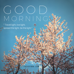 good morning 03.11.18