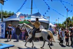 Santa Clara County Fair 2018